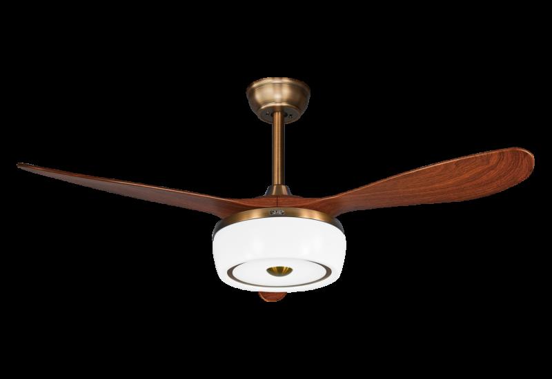 吊扇灯厂家是否能协调整个室内和室外环境